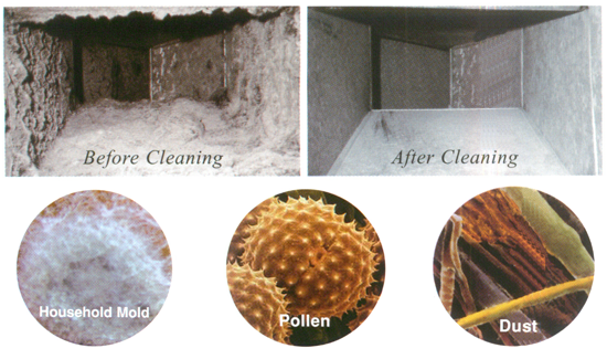 Carpet Cleaning Spokane® (Lund'sCarpet Cleaning) - Air Duct and Mold Cleaning